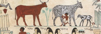 10.000 BC: food surpluses in the First Agricultural Revolution