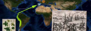 1500: Exploration of the world and cultivation by Europeans